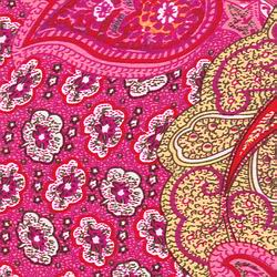 Cowboy Images Pretty in Pink Paisley