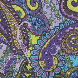 Cowboy Images Turquoise and Violet Paisley