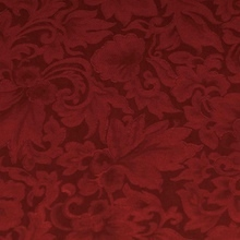 Cattle Kate Red Jacquard