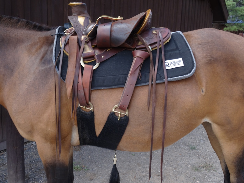 Riding saddle pack cinch