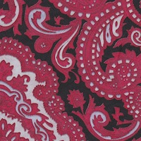 Wyoming Trader Red Black Paisley Silk Scarf