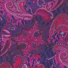 Royal & Red Paisley